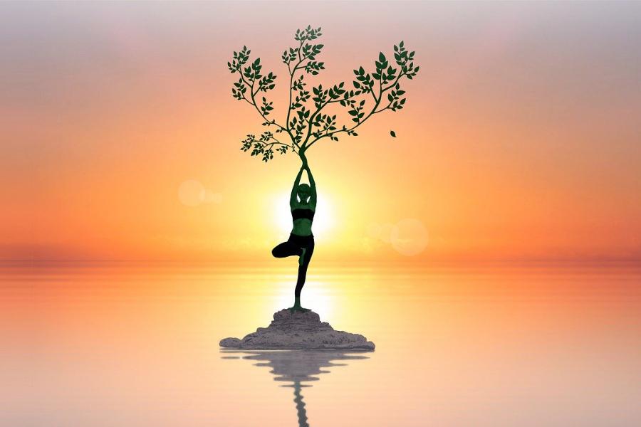 Baum Balance